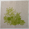 Succulent Garden Table Napkin Set of 4 in Green