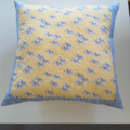 Nursery cushion