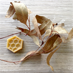 Bush Melts - Beeswax - Wax Melts