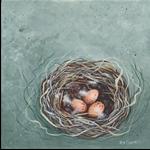 New Holland Honeyeater nest and eggs
