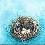 Eastern Spinebill nest and eggs