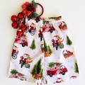 "Sizes 3, 4 and 5 - ""Santa on the Go"" Christmas Shorts"