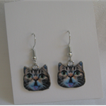 Fiona's Enamel Cat Earrings