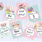 Baby Milestone Cards - Owl Theme Milestone Cards - Baby Photo Cards 30 Cards