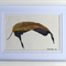 Leaf 2 - Watercolour Botanical Painting on Paper (Framed)