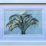 Palm Tree - Watercolour Botanical Painting on Paper (Framed)