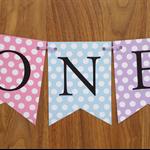 1st Birthday Girl Custom Made ONE Bunting Banner