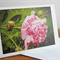Pink Peony Rose Greeting Card Floral - Blank Photo Art Card