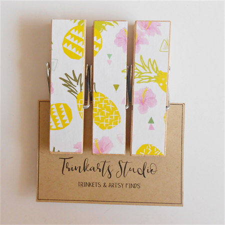 Tropical Pineapple & Hibiscus - Peg Magnets - Magnetic Memo Pegs - Set of 3