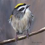 Golden Crowned Kinglet, Original bird painting, bird art, wildlife painting,