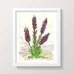 "Lavender Painting Kitchen Wall Art 5 x 7"" Art Print"
