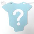 Baby Shower gender reveal banner. Baby Bodysuit Romper garland. Pink Blue