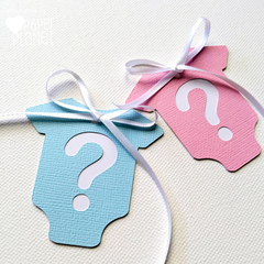 Gender reveal baby shower Gift Tags. Pink and Blue. Baby-romper, one piece shape