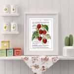 Raspberries Cordon-Blue Le Francais Classique