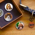 Pet Photo Glass Magnets