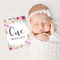 Secret Garden Girls Floral Baby Milestone Cards. Monthly Pack of 13 Cards
