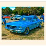 Print - Blue Mustang