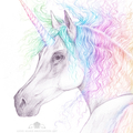 8x10 inch PRINT Rainbow Unicorn Art Pencil Colour Drawing Kids Room Wall Art