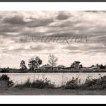 Williams River Fine Art Photographic Print
