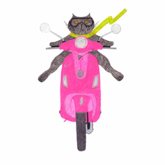 Cat on a Pink Vespa