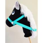 Monochrome black and white hobby horse
