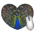 Peacock Mouse Pad - Heart shaped mouse pad