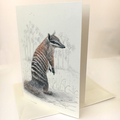Numbat portrait greeting card Australian wildlife art