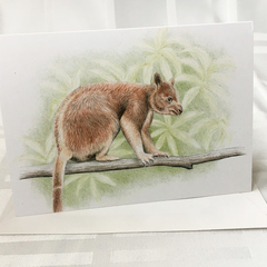 Tree Kangaroo greeting card Australian wildlife art forest tree-dwelling animal