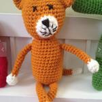Mr Cat Fox