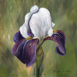 Iris, Original Acrylic Floral painting,  Flower painting, Gift Idea, Colourful