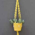 Macramé Plant Hanger 75cm >>Custom Dyed<<
