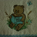Babies Embroidered Towelling Bibs-Garden Bear