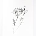Botanical Fine Art Print  8 x 10