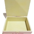 Soft Pink Time Capsule Keepsake Trinket Treasure Memory Wooden Baby Box