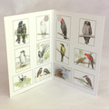 Gift Cards Mini size - BIRDS - Gift Boxed set of 12 - Australian