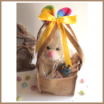 BUNNY's Easter Carry Bag-makes 12 delicious cookies. Includes soft toy & basket.