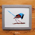 Variegated Fairy wren bird print of watercolour painting A4