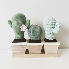 Crochet Cactus with Pink Flowers - Set of three