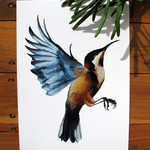 Eastern Spinebill honeyeater bird print of watercolour painting A4