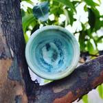 Small Ceramic Mug - White/Green/Aqua