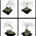 Windswept Gem Tree