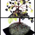 Blackberry Fruit Tree