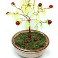 Apple Gem Tree