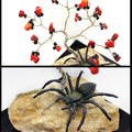 Red Coral and Black Bead Gem Tree with Spider