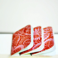Mini Blank Books {3} Red Orange Floral | Mini Notebooks | Little Pink Books