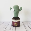 Crochet Cactus with White Flowers in vintage-style Pot - Free Shipping