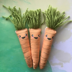 Carrot Catnip Toy