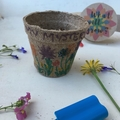 Kids Mystery Blooms Cup - Surprise Flower Growing Cup