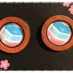 Timber and Glass Studs
