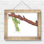 Just Hangin Around ~ A4 Giclee Print | Praying Mantis | Home Decor Nature Art